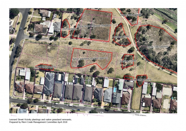 Map Leonard St vicinity plantings and grassland remnants