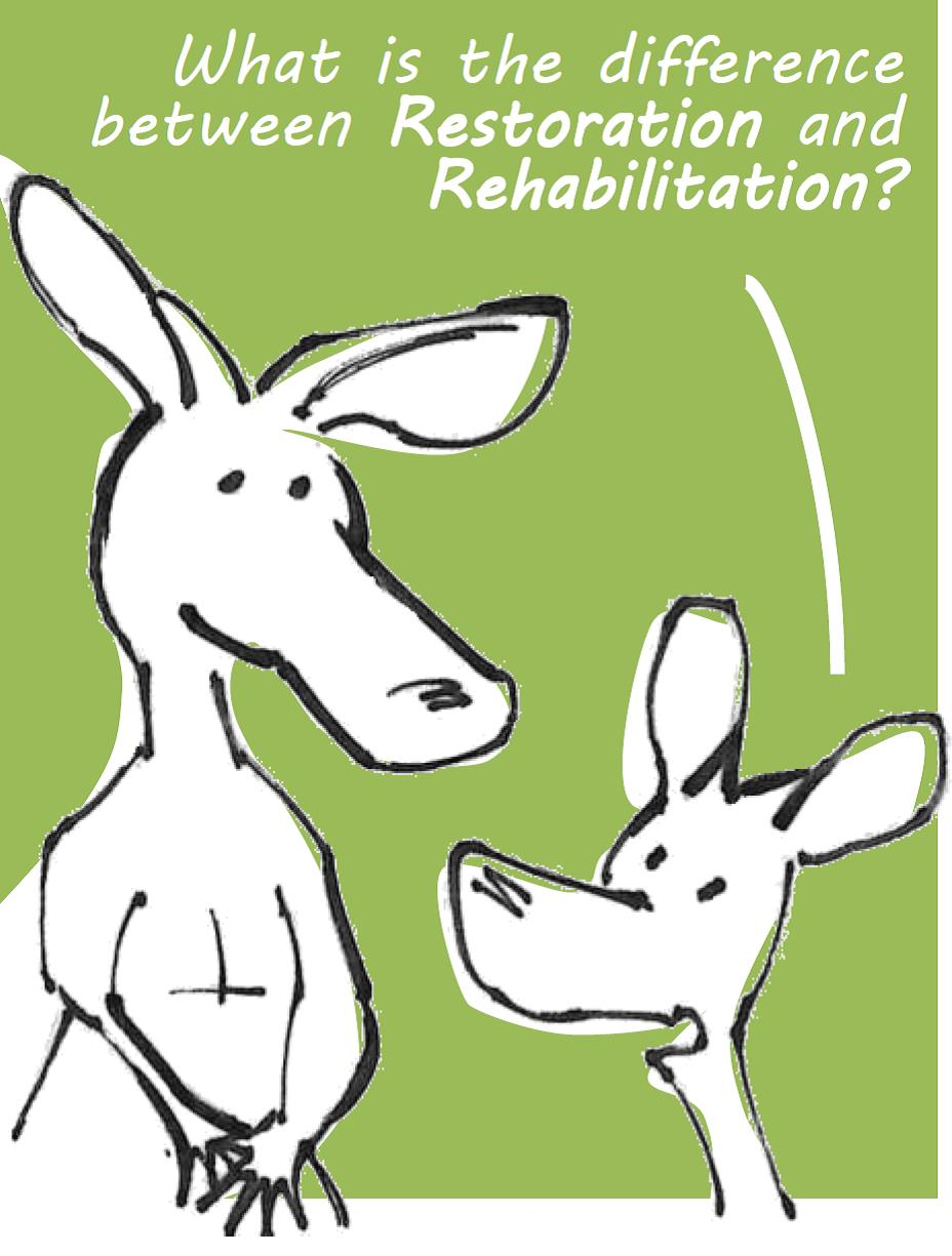What is the difference between Restoration and Rehabilitation?