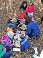 Nature Play Whittlesea