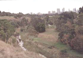 Yarra Bend parklands, Clifton Hill 1996