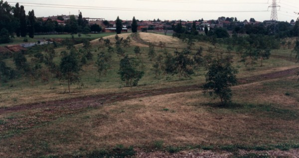Former channel of Merri Creek and residual hill at Site 10