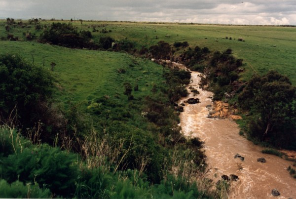 Terraces on Merri Creek north of Galada Tamboore, Campbellfield/Thomastown, Victoria, Australia