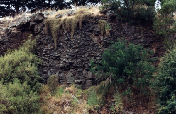 Vertical and inclined basalt columns at Northcote Park Football Ground