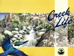 Creek Life cover
