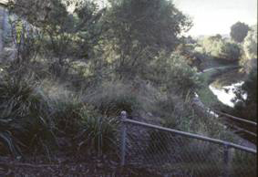 Path to St Georges Road , Nth Fitzroy 1993